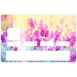 Carte Bleu Fleurs lavande