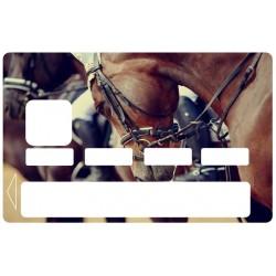 CB Cheval