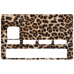 CB léopard