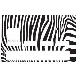 CB zebre